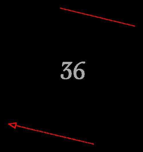 Sektion 36