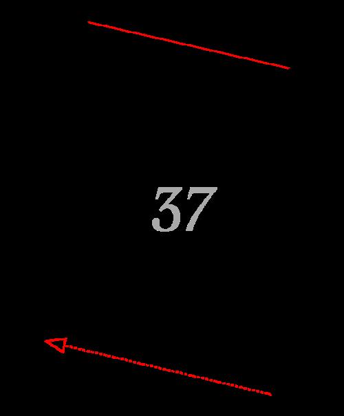 Sektion 37: Galerie-Ansicht