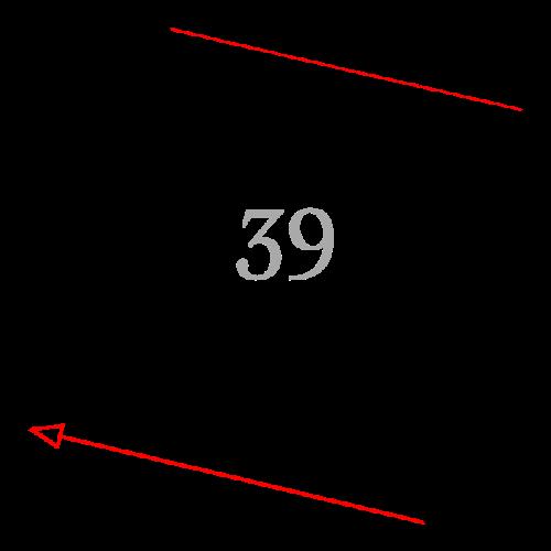 Sektion 39: Galerie-Ansicht
