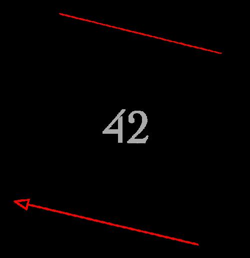 Sektion 42