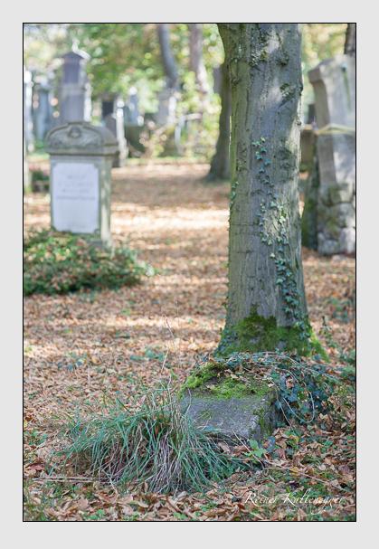 Grab der Familien Hauschild & Holzmaier auf dem Alten Südfriedhof München (Oktober 2007)