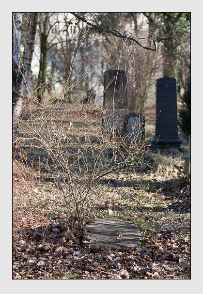 Grab der Familie Prantl auf dem Alten Südfriedhof München (Februar 2008)