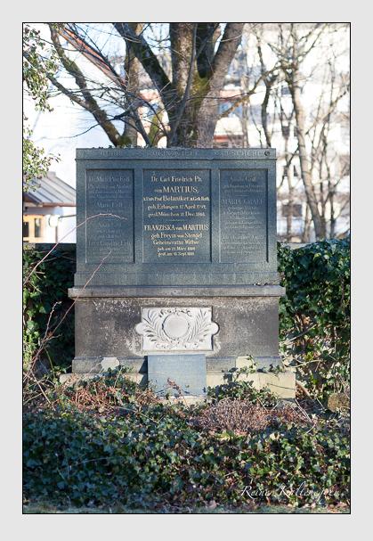 Grab der Familien Attensamer & Erdl & Graff & Martius auf dem Alten Südfriedhof München (Februar 2008)