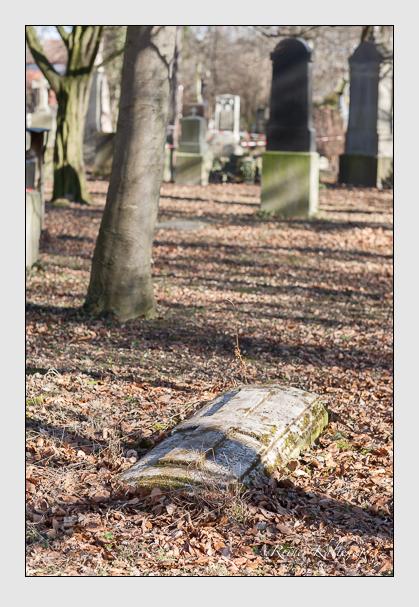 Grab der Familie Beyschlag auf dem Alten Südfriedhof München (Februar 2008)