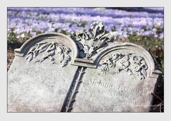 Grab der Familie Ermarth auf dem Alten Südfriedhof München (Februar 2008)