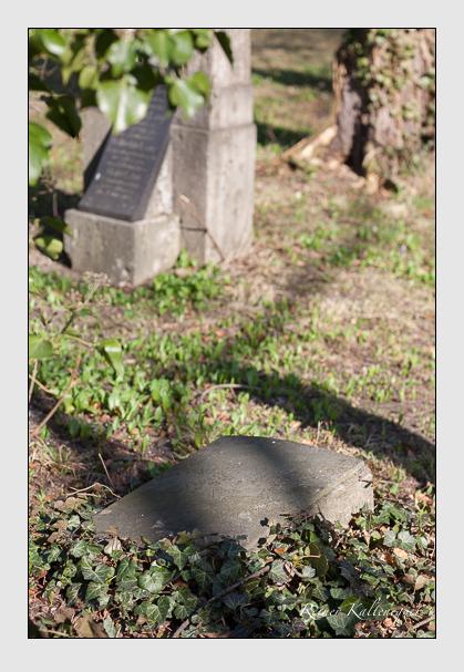 Grab der Familie Edlinger auf dem Alten Südfriedhof München (März 2008)