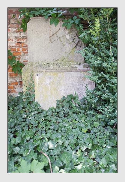 Grab der Familien Delpy von La Roche · Rücker auf dem Alten Südfriedhof München (August 2012)