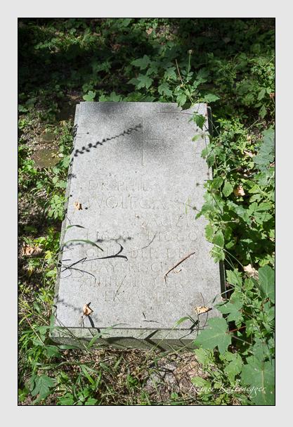 Grab der Familie Bauer auf dem Alten Südfriedhof München (August 2012)