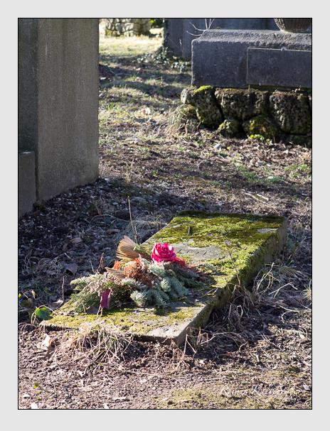 Grab der Familien Piloty & Schorn auf dem Alten Südfriedhof München (Februar 2014)