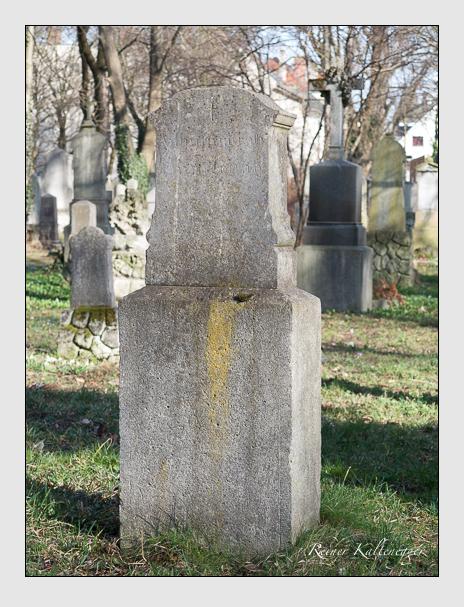 Grab der Familie Emmerling auf dem Alten Südfriedhof München (März 2014)