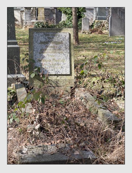 Grab der Familie Rosipal auf dem Alten Südfriedhof München (März 2014)
