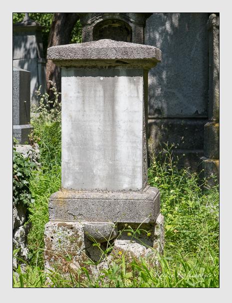 Grab der Familie Grandauer auf dem Alten Südfriedhof München (Juni 2014)