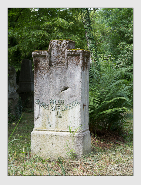 Grab der Familien Illing · Karlmann auf dem Alten Südfriedhof München (Juni 2014)