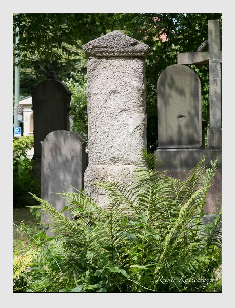 Grab der Familie Zentgraf auf dem Alten Südfriedhof München (Juni 2014)