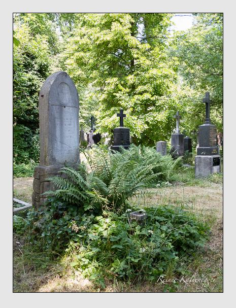 Grab der Familien Drexler · Händler auf dem Alten Südfriedhof München (Juni 2014)