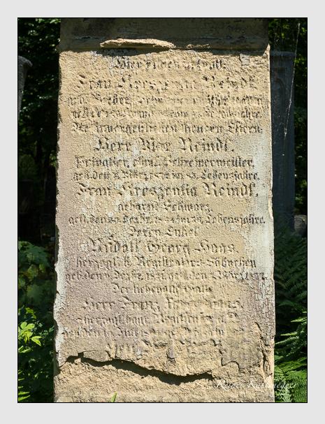 Grab der Familie Reindl auf dem Alten Südfriedhof München (Juni 2014)