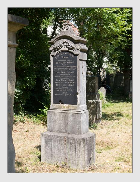 Grab der Familie Schmid auf dem Alten Südfriedhof München (Juni 2014)