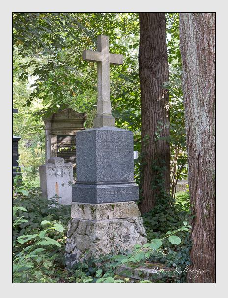 Grab der Familie Schnorr von Carolsfeld auf dem Alten Südfriedhof München (August 2014)