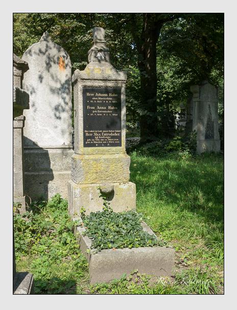 Grab der Familien Entrodacher · Hahn auf dem Alten Südfriedhof München (September 2014)