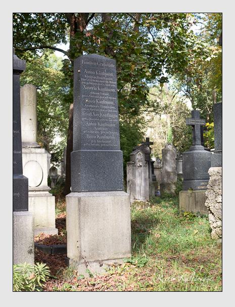 Grab der Familie Kaufmann auf dem Alten Südfriedhof München (Oktober 2014)