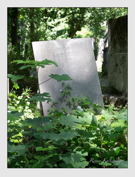 Grab der Familie König auf dem Alten Südfriedhof München (Juni 2015)
