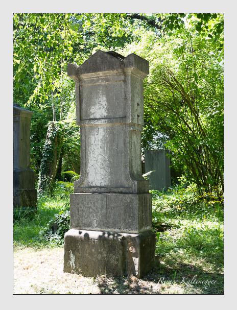 Grab der Familie Pfeiffer auf dem Alten Südfriedhof München (Juni 1015)
