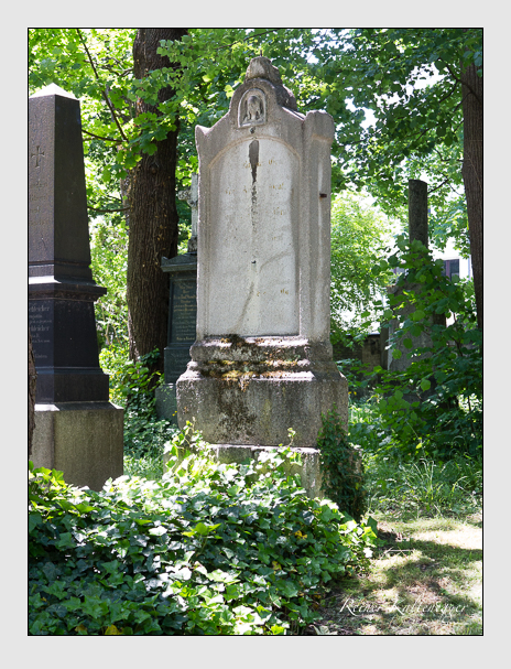 Grab der Familie Graf auf dem Alten Südfriedhof München (Juni 2015)