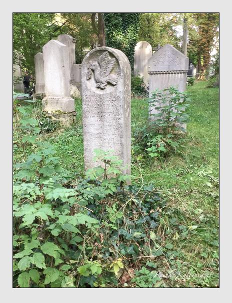 Grab der Familien Fürer-Haimendorf & Hoggenstaller auf dem Alten Südfriedhof München (September 2016)