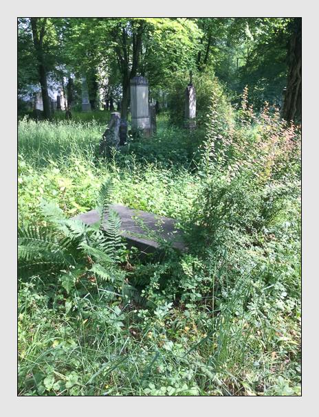 Grab der Familie Maerkl auf dem Alten Südfriedhof München (Juni 2017)