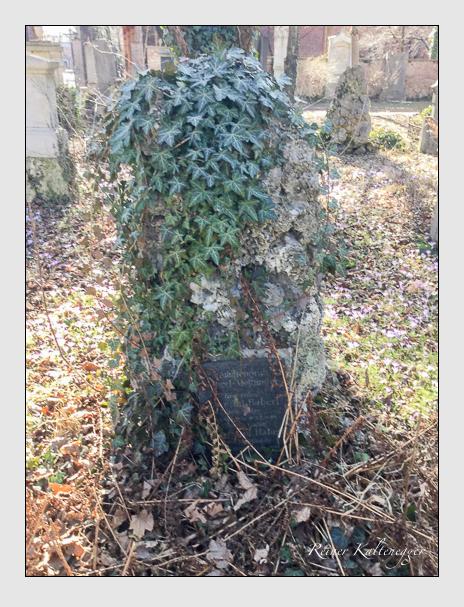 Grab der Familien Haberl · Meittinger auf dem Alten Südfriedhof München (Dezember 2017)
