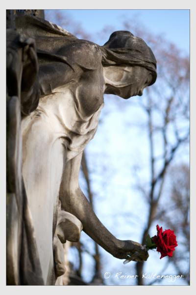 Grab der Familie Meier auf dem Alten Südfriedhof München (Februar 2021)