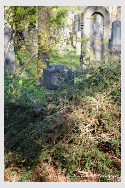 Grab der Familie Dresch auf dem Alten Südfriedhof München (März 2021)