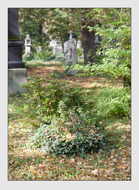 Grab der Familie Läverenz auf dem Alten Südfriedhof München (Oktober 2007)
