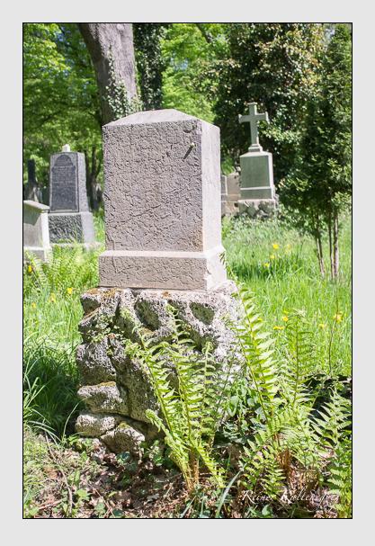 Grab der Familie Tobler auf dem Alten Südfriedhof München (Mai 2013)