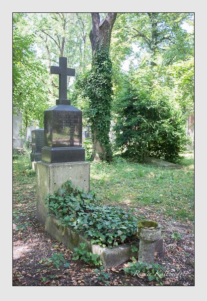 Grab der Familie Fahrer auf dem Alten Südfriedhof München (August 2013)