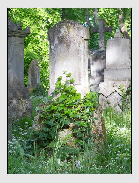 Grab der Familien Fleischmann & Fürst auf dem Alten Südfriedhof München (Mai 2016)