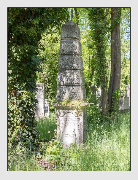 Grab der Familien Ellmann & Koller auf dem Alten Südfriedhof München (Mai 2016)