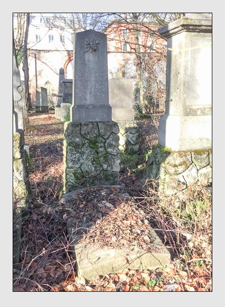 Grab der Familie Praun auf dem Alten Südfriedhof München (Januar 2018)