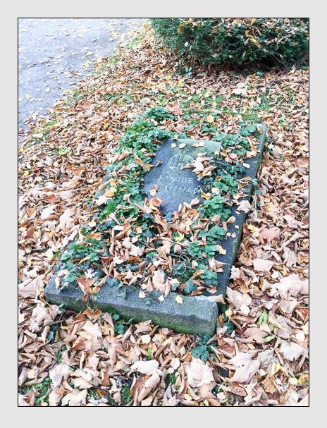 Grab der Familie Vollnhals auf dem Alten Südfriedhof München (Dezember 2017)