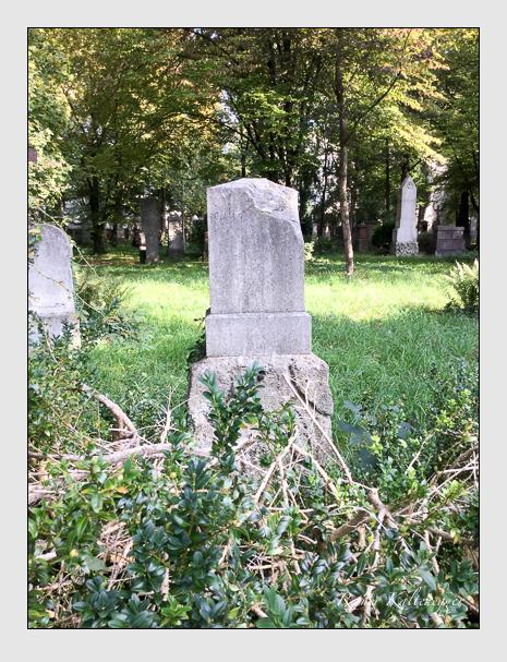 Grab der Familie Rupp auf dem Alten Südfriedhof München (September 2018)