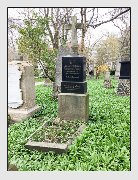 Grab der Familie Schifferer auf dem Alten Südfriedhof München (April 2018)