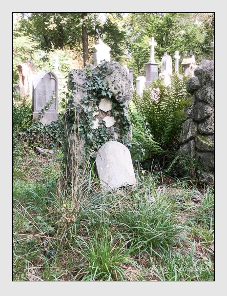 Grab der Familie Sprenzinger auf dem Alten Südfriedhof München (September 2018)