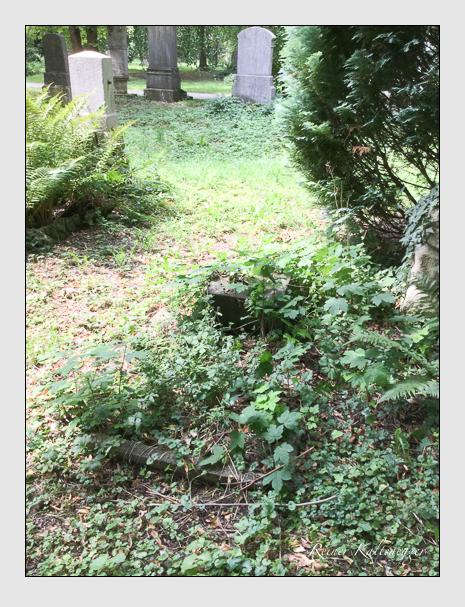 Grab der Familie Lehr auf dem Alten Südfriedhof München (Juli 2018)