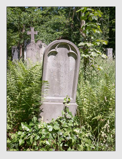 Grab der Familie Schadenfroh auf dem Alten Südfriedhof München (Juni 2014)