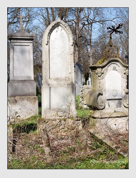 Grab der Familien Meusel · Ziehrer auf dem Alten Südfriedhof München (April 2015)