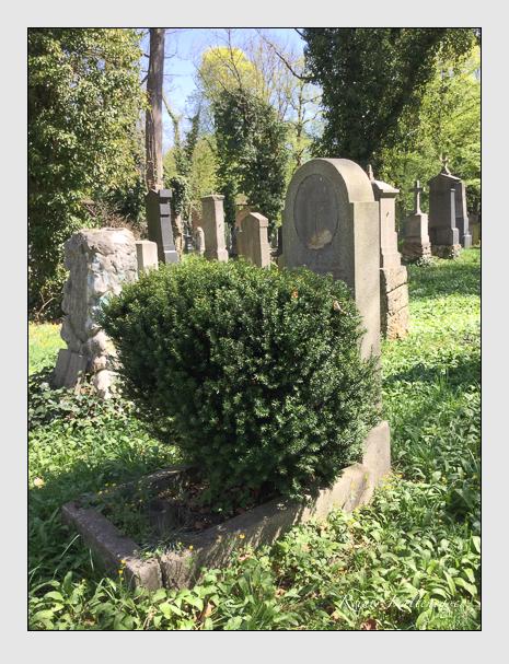 Grab der Familie Hammer auf dem Alten Südfriedhof München (April 2018)