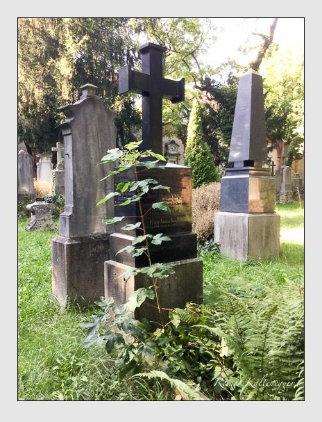 Grab der Familie Kögl auf dem Alten Südfriedhof München (August 2019)