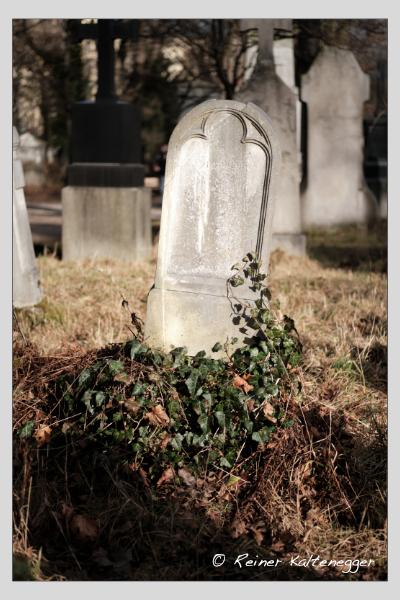 Grab der Familie Schadenfroh auf dem Alten Südfriedhof München (Februar 2021)