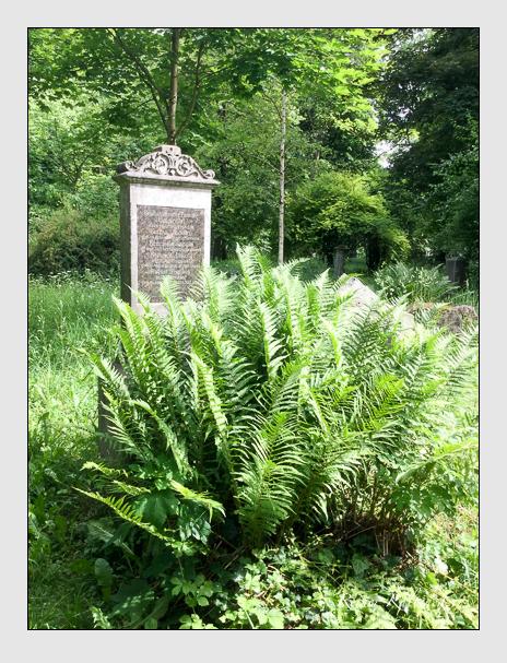 Grab der Familien Jacobi · Nenning auf dem Alten Südfriedhof München (Juni 2017)