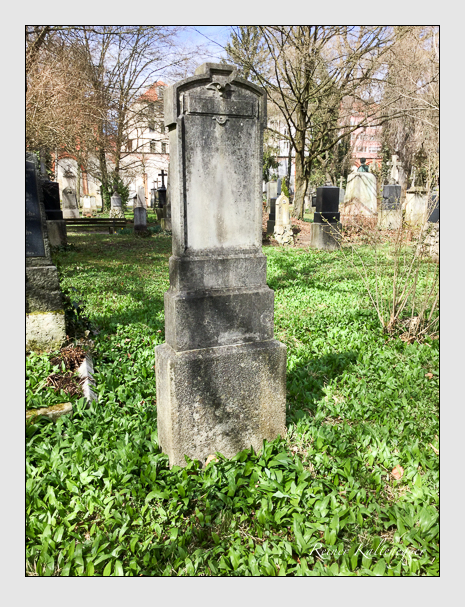 Grab der Familie Schmid auf dem Alten Südfriedhof München (April 2018)